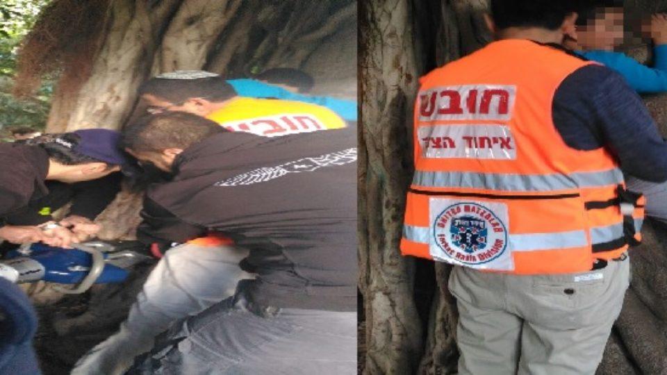 בן 10 טיפס על עץ ורגלו נתקעה בגזע העץ
