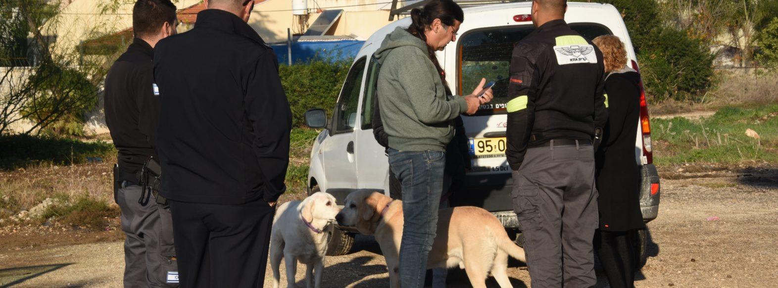 עיריית קריית אתא ערכה מבצע אכיפה ללכידת כלבים משוטטים