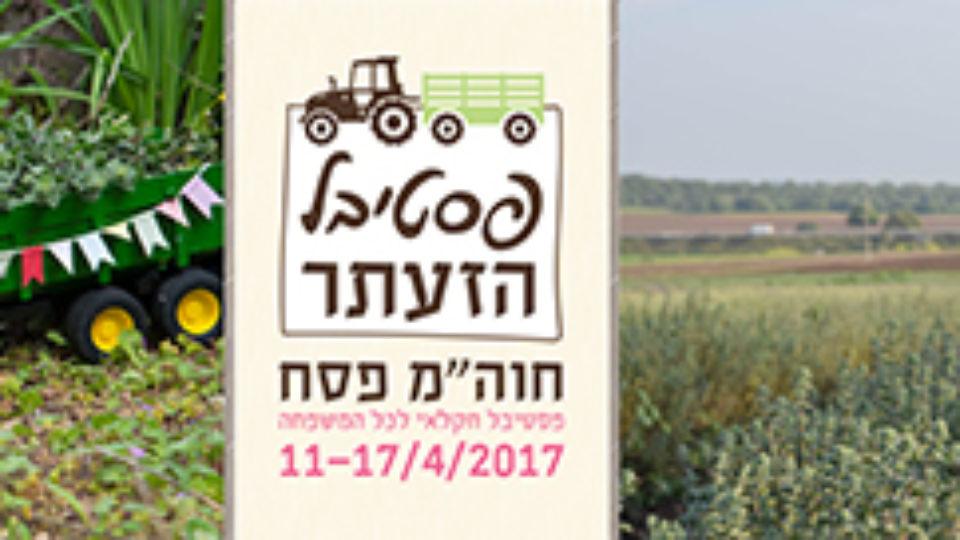 11-17.4 פסטיבל הזעתר בשדות בית לחם הגלילית