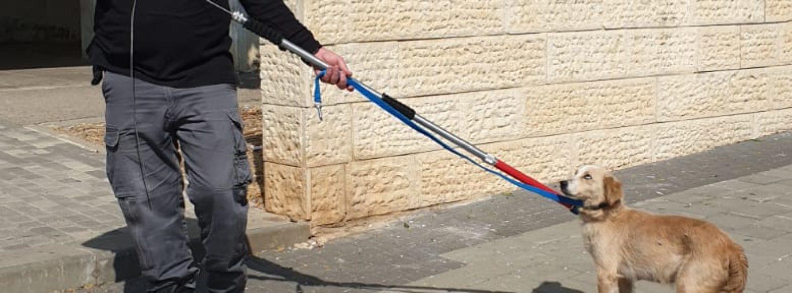מבצע אכיפת כלבים משוטטים ואי איסוף צרכים בעיר
