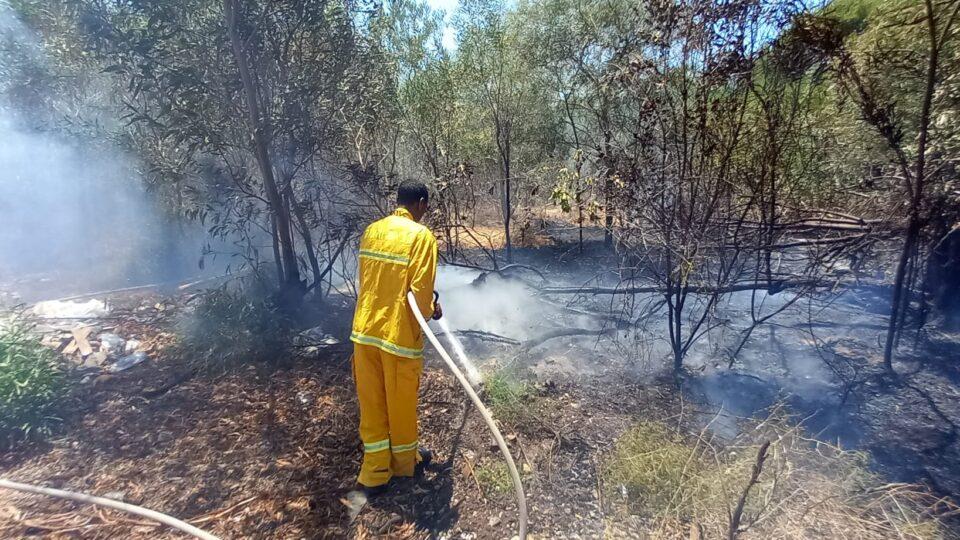 קריית אתא: פונה בית ספר עקב שריפת חורש בסמוך