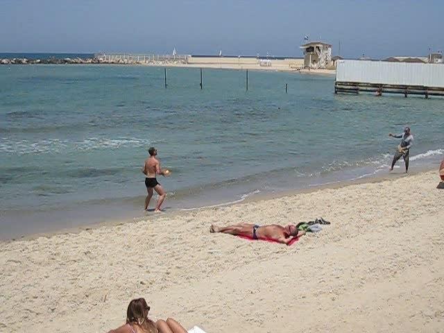 חוף ים: מתוך ויקיפדיה