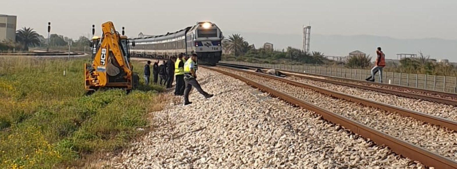 תאונה בין כרבת לסוס הביאה לסגירה של תנועת הרכבות למשך שעה