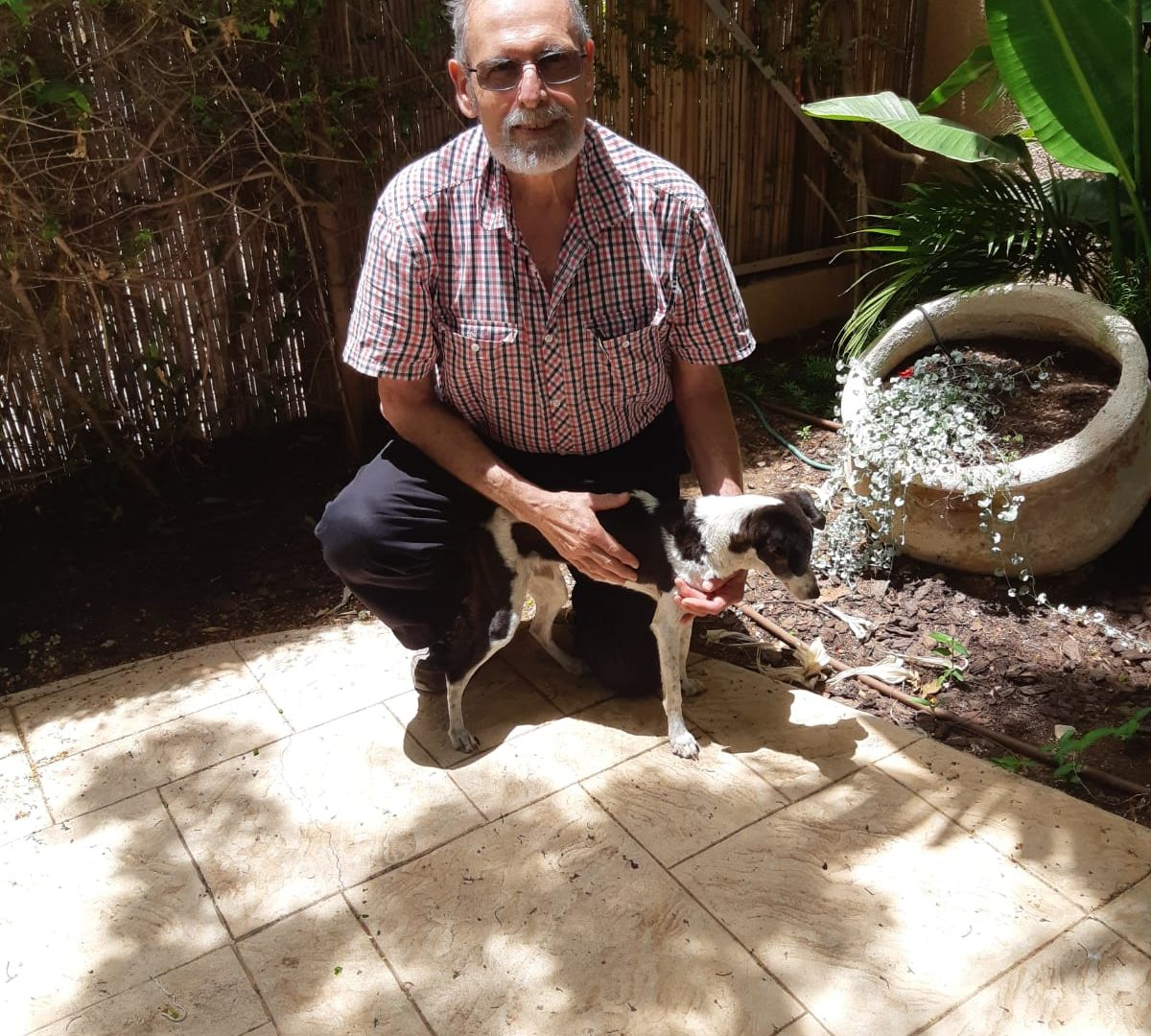 אהרון מצנר וכלבו בובי צילום:עצמי